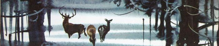 Bambi Hanak deer in wood snow