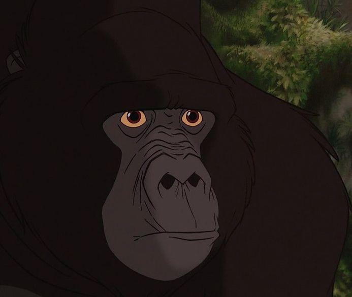 картинки горилл из тарзана суждено