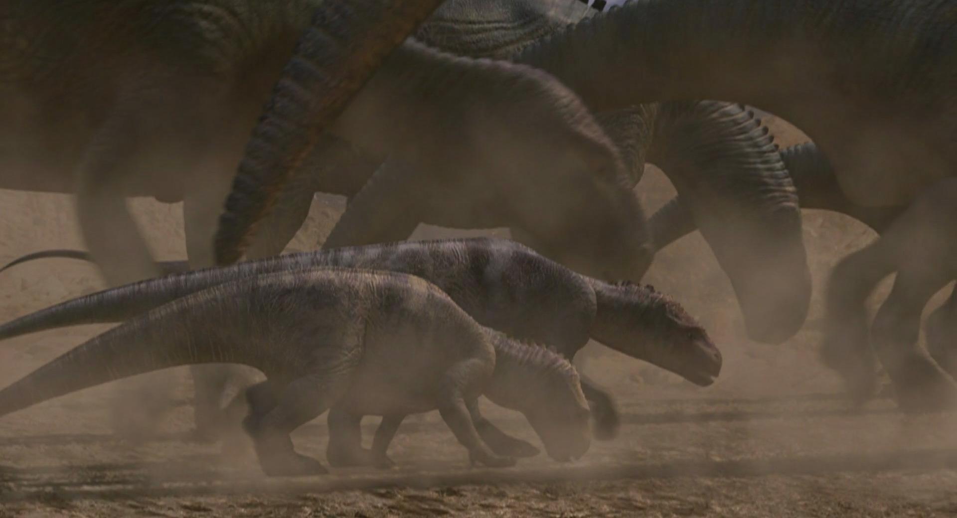 pachyrhinosaurus vs carnotaurus - photo #46