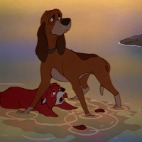 The Fox and the Hound vs. The Fox and the Hound